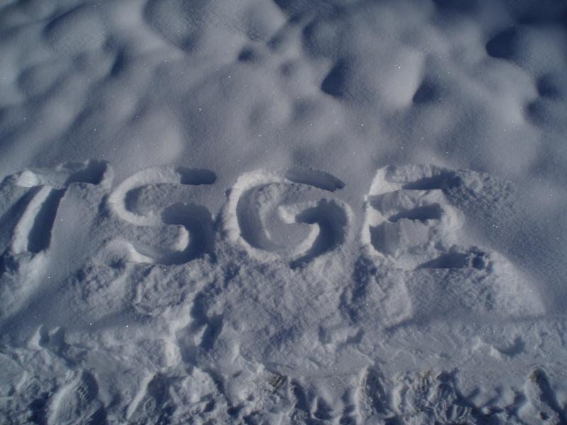 Le logo TSGE dans tous ses états ... - Page 3 Pc040010