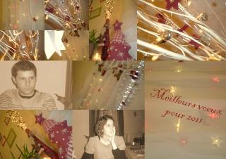 bonne année2011 Bonne_11