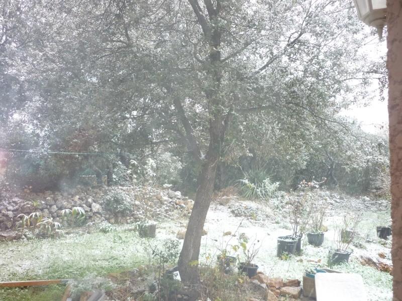 neige Neige_10