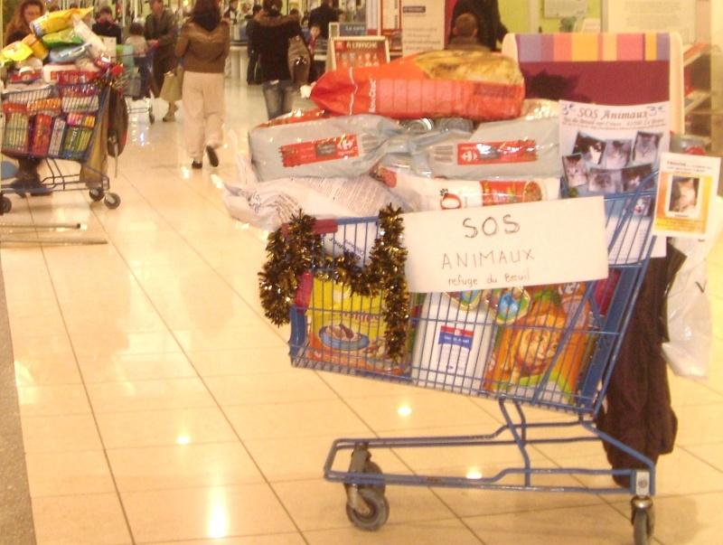 CHARIOT DE NOEL NOVEMBRE 2010 St834917