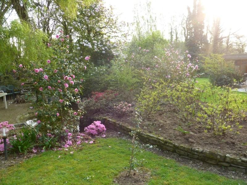 Aperçus de mon jardin Breton 01122
