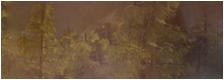 Legend of the Guardians Sans_t16