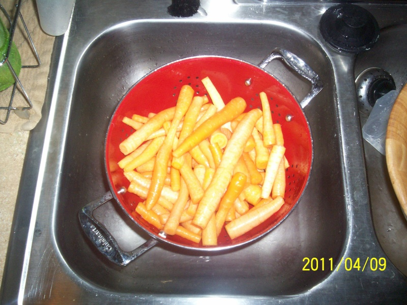 CRAZY Carrot Harvest pics 100_2911