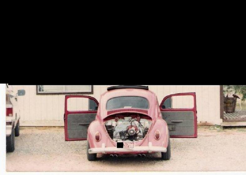 """The bug back in the day """"LoWL1F3"""". Bug10"""