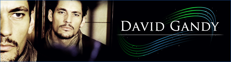 David Gandy Community
