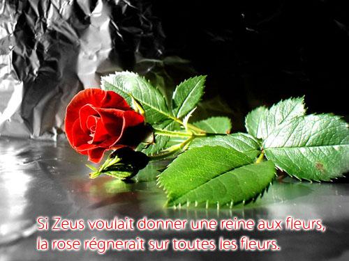 Le BAR M'AIDE (3) - Page 37 Citati10