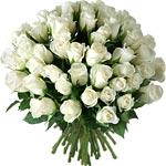 Le BAR M'AIDE (3) Roses-11