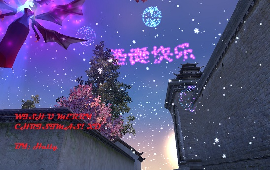 Happy Holiday and Christmas =) 2010-111