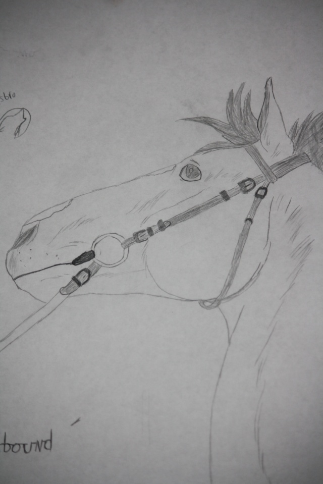 Avalon's Art Bowchi14