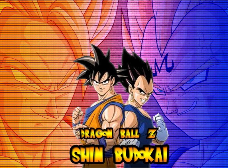 Dragon Ball Z:Shin Budokai Rol