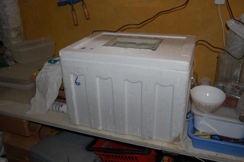 incubateur Dsc_0012