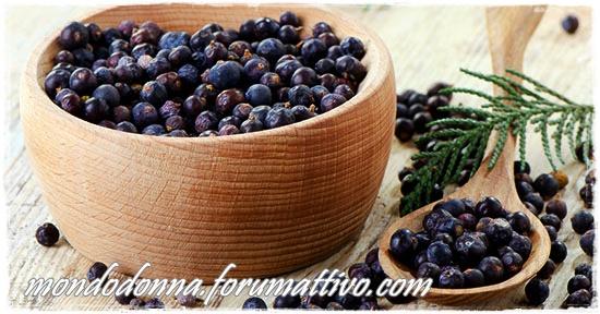Ginepro: le sue proprietà, calorie, utilizzo in cucina Bacche10