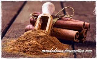 Cannella: le sue proprietà, calorie, utilizzo in cucina X5-buo10