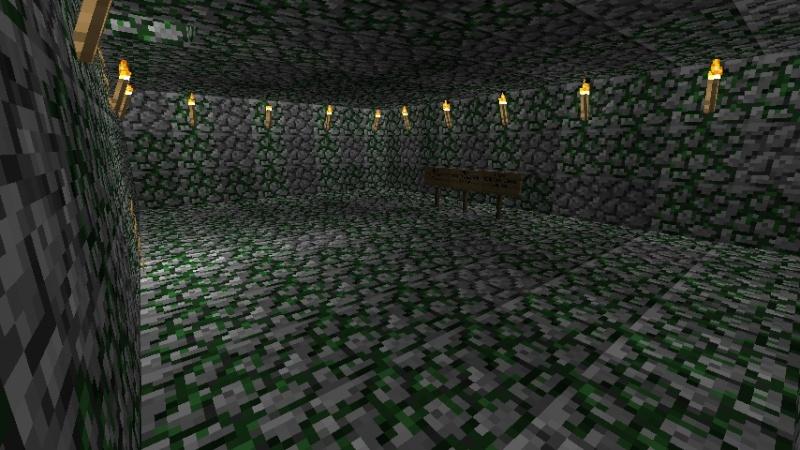 Mob Spawner Room 2011-023