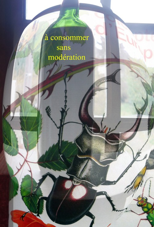 VOTEZ - Grand CONCOURS photo LUMIX - Mars 2011 - SECTION 1 Livre_10