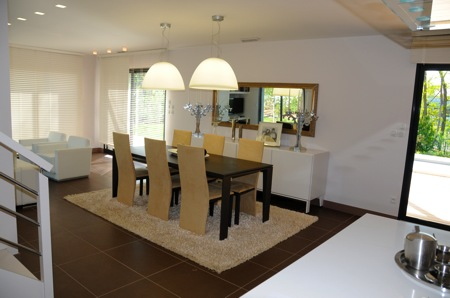 projet Salon, salle a manger et couloir 09013110