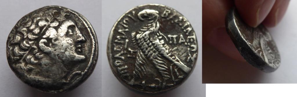 Tétradrachme Ptolémée  Tetra10