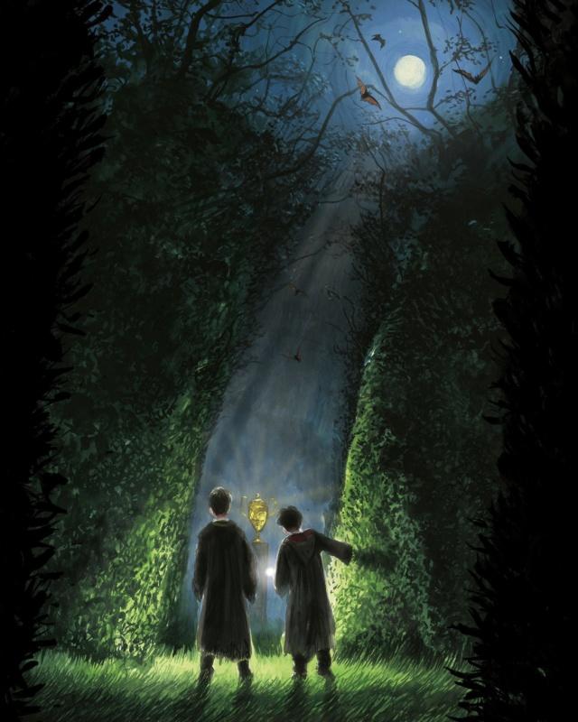 Harry Potter - Livres de collection et produits dérivés - Page 25 A110