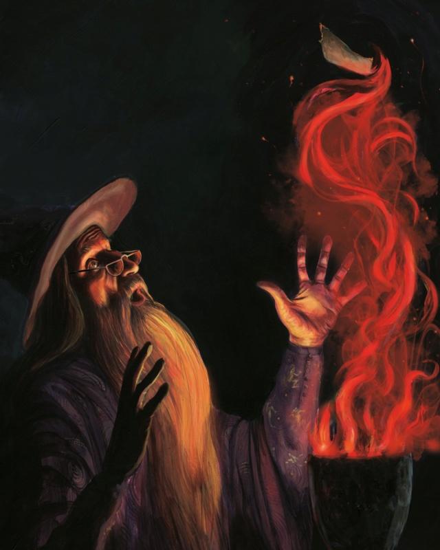 Harry Potter - Livres de collection et produits dérivés - Page 25 A510