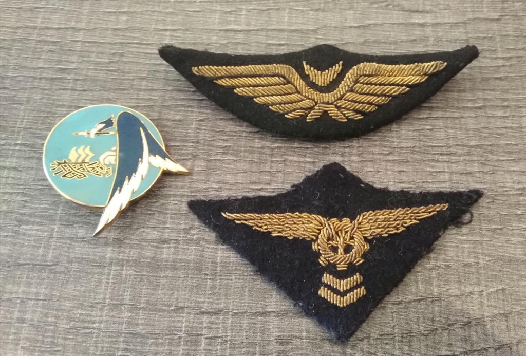 Insignes armée de l'air Img_2091