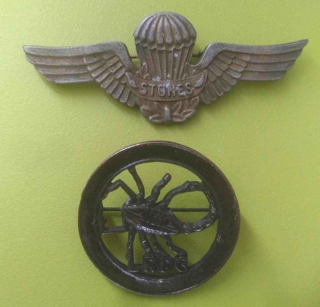 Deux insignes Img_3097