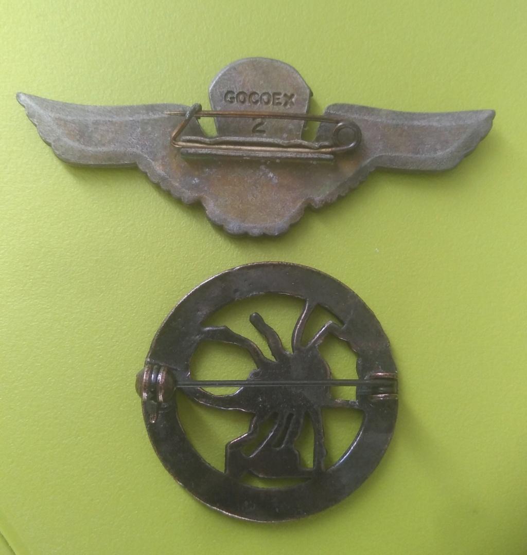 Deux insignes Img_3098