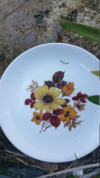 Flower pattern  20181112