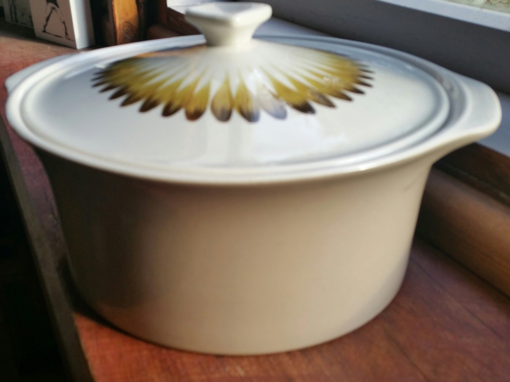 Casserole - is the shape 870 with its lid? 20190616