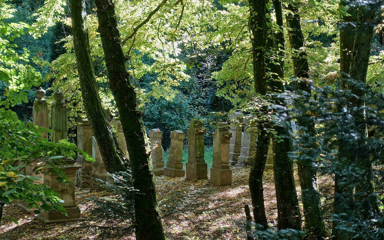 Le cimetière oublié A2010810