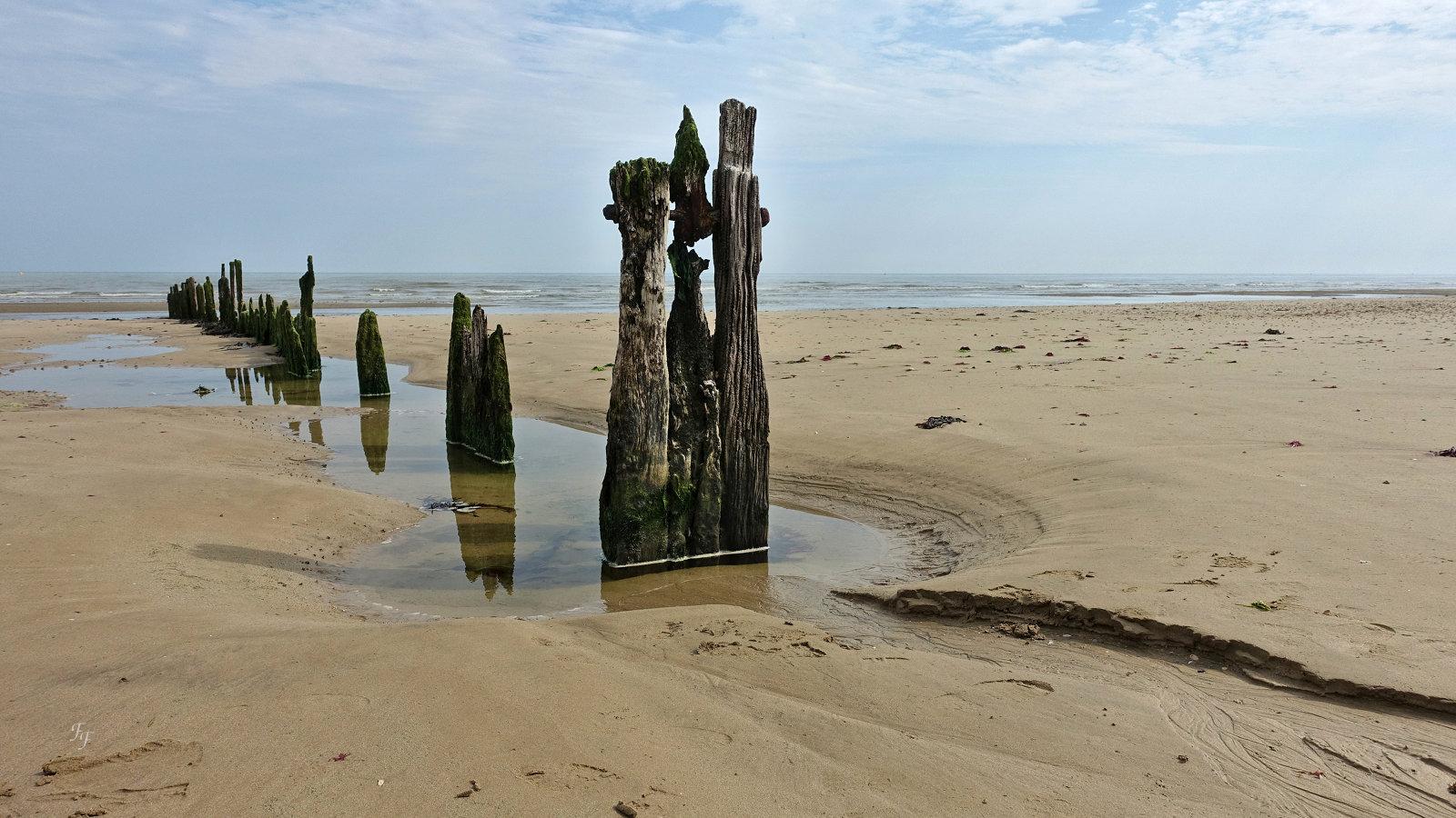J'irai revoir ma Normandie A2018_16