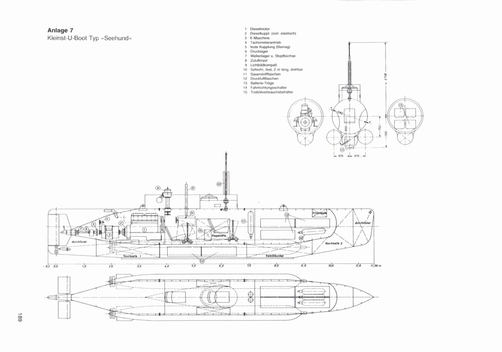 Seehund Drawing Seehun10