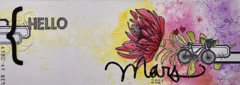 En mars avec Rosita et myriamMG - Page 3 A21fe410