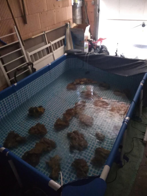 700 litres à kuku Img_2012
