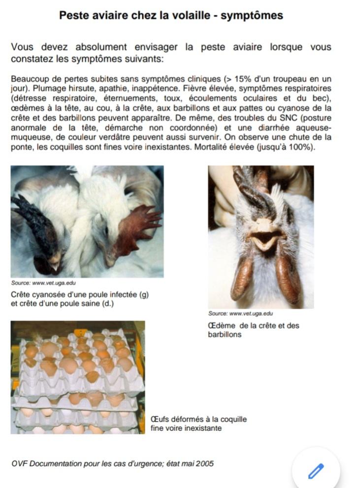 ARRETE DU 23 OCTOBRE 2020 influenza aviaire  20201010