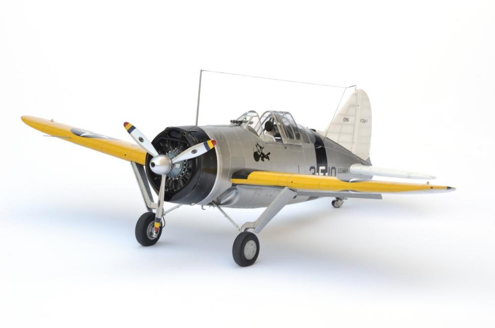 Brewster Buffalo F2A-1 _zfkf211