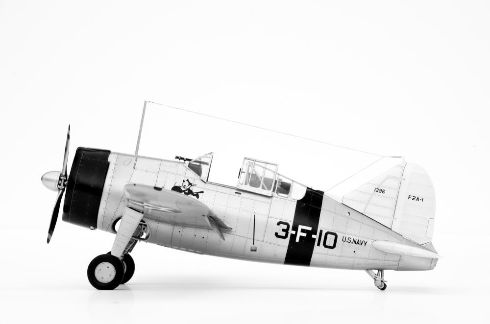 Brewster Buffalo F2A-1 _zfkf217