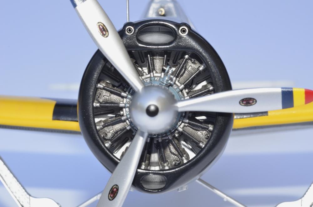 Brewster Buffalo F2A-1 _zfkf222