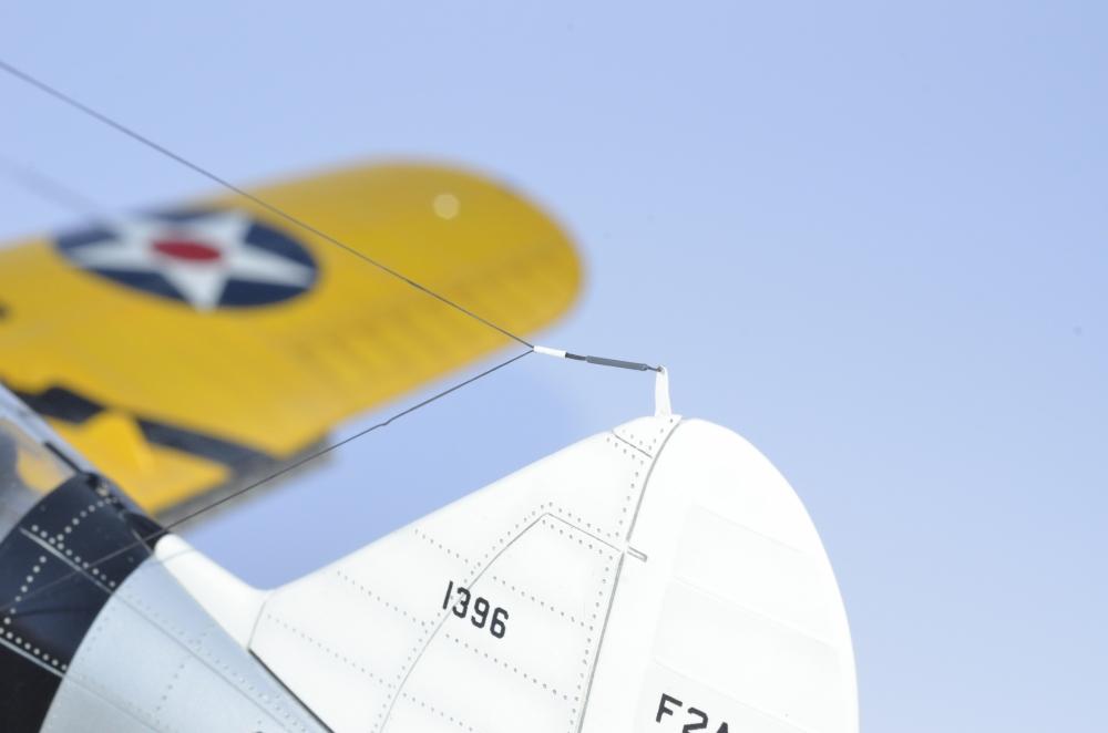 Brewster Buffalo F2A-1 _zfkf225