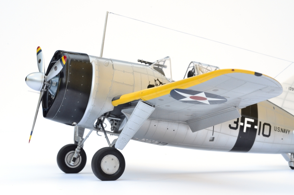 Brewster Buffalo F2A-1 _zfkf236