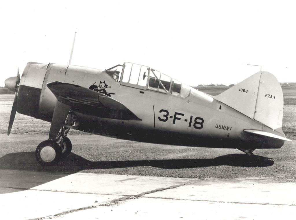 Brewster Buffalo F2A-1 _zfkf243
