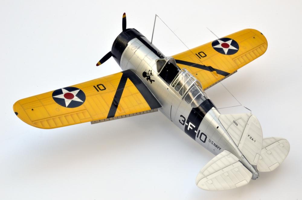 Brewster Buffalo F2A-1 _zfkf244