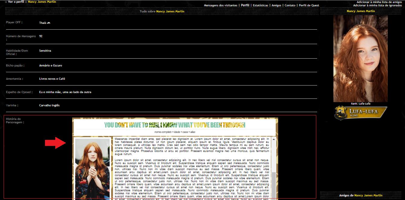 HTML/CSS na Caixa de Texto do Perfil Questy12