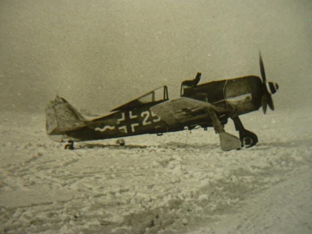 FW 190 F8 Revell 32 Lt Konrad Pingel 7/SG 2 Ploesti Avril 44 P1160010
