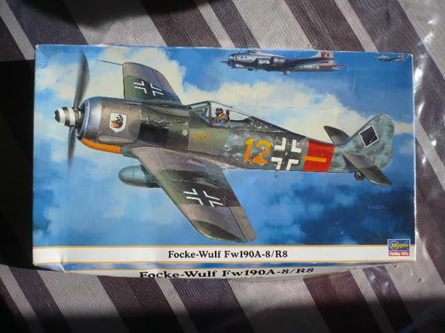 Fw 190 A8/R8 Obst Walter Dahl P1160134