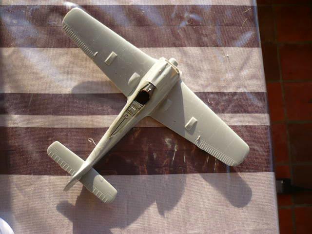 Fw 190 A8/R8 Obst Walter Dahl P1160152