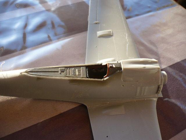 Fw 190 A8/R8 Obst Walter Dahl P1160155