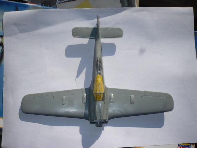 Fw 190 A8/R8 Obst Walter Dahl P1160159