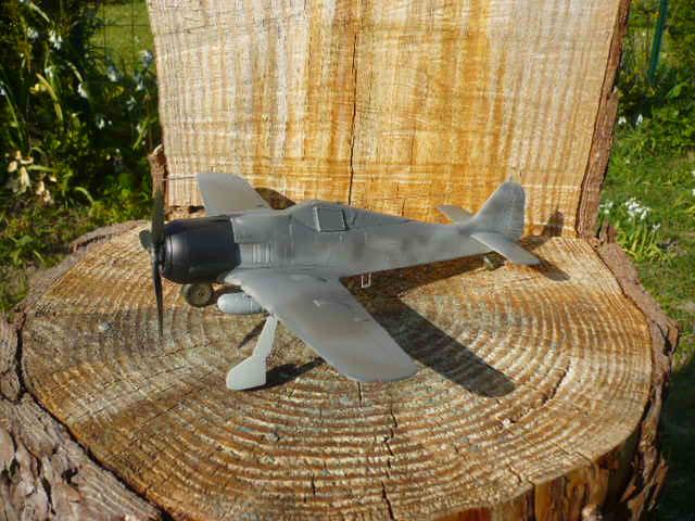 Fw 190 A8/R8 Obst Walter Dahl P1160173
