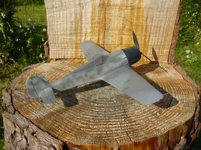 Fw 190 A8/R8 Obst Walter Dahl P1160176