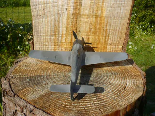 Fw 190 A8/R8 Obst Walter Dahl P1160177